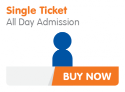 December  All Day Single Admission